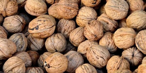 BEST WALNUTS AND ALMONDS STORAGE