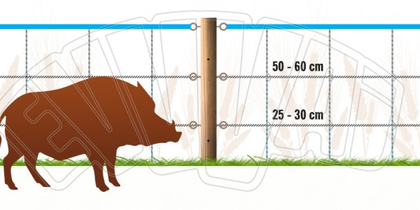 HOW TO BUILD A FENCING FOR WILD BOAR